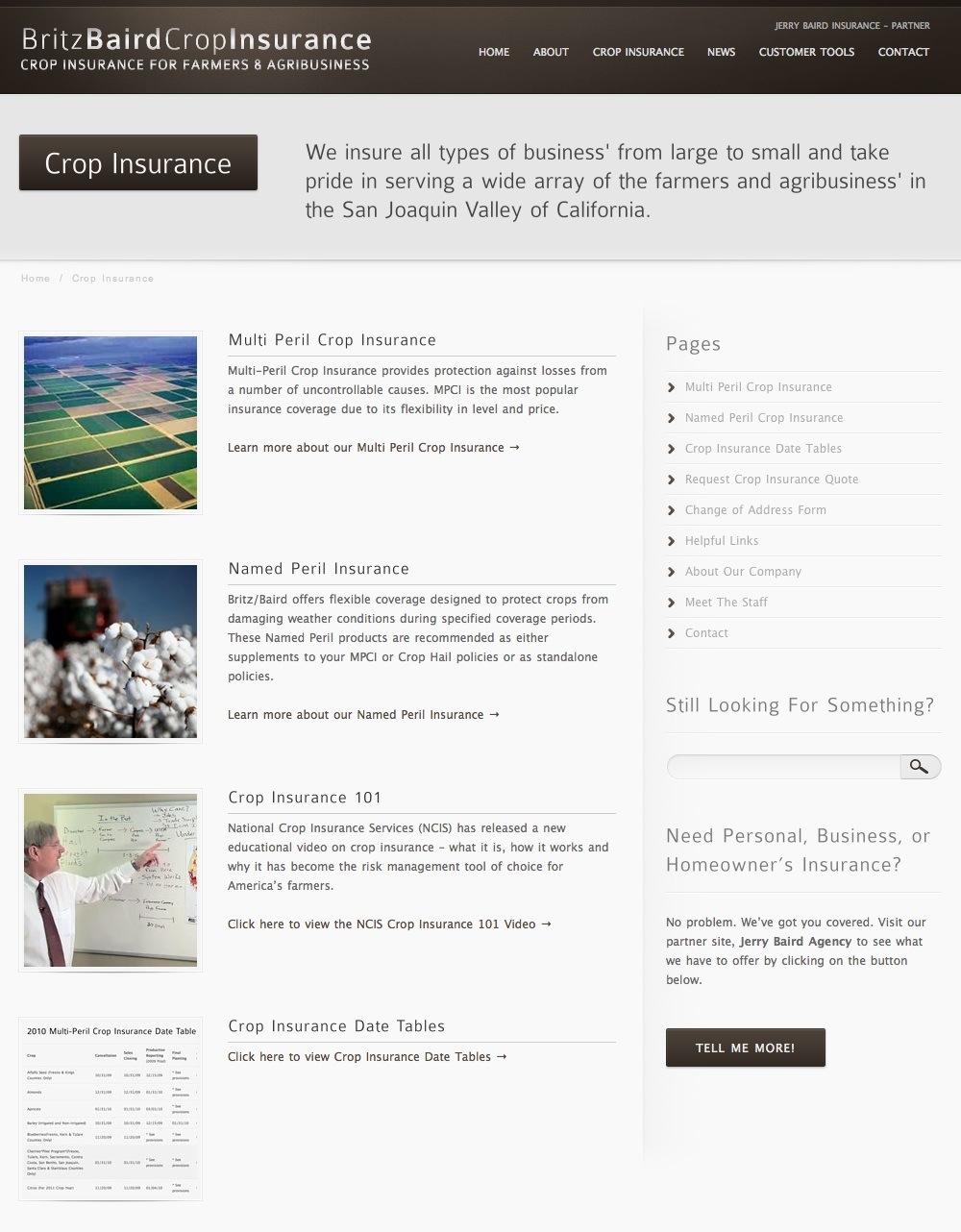 Britz Baird Insurance About