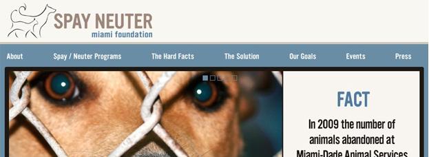 Spay Neuter Miami Foundation