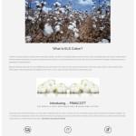 Bowles Farm Pimacott Page
